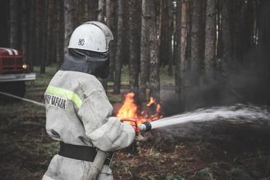 В МЧС рассказали об обстановке с пожарами в Воронежской области