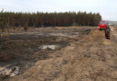 Последний крупный пожар в Воронежской области тушили четверо суток