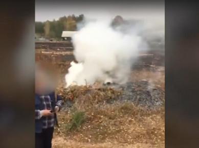 Разжигавших костры жителей Воронежской области оштрафовали на 2 млн рублей