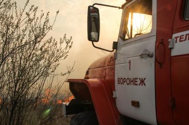 Воронежцы сняли на видео поджигателей сухой травы в Масловке