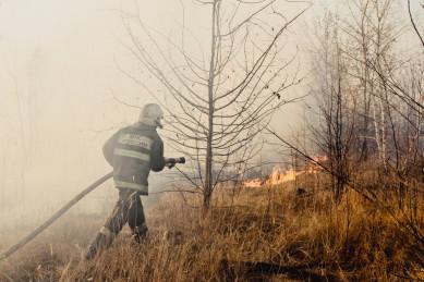 За три дня пожары в Воронежской области охватили511 гектаров