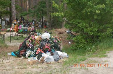 Сотрудники Воронежского заповедника пожаловались на стихийное кладбище