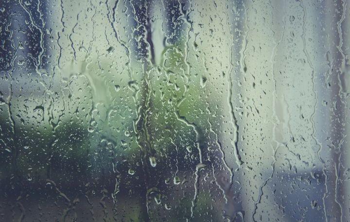 Длинные выходные в Курске будут дождливыми