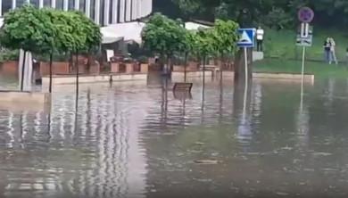В Воронеже затопило сауну, ветклинику, магазины и самый большой парк