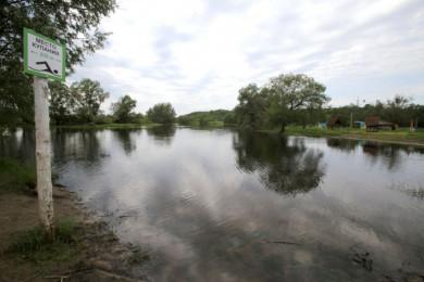 Липецкую фирму обязали выплатить 3 млн рублей за загрязнение реки под Воронежем