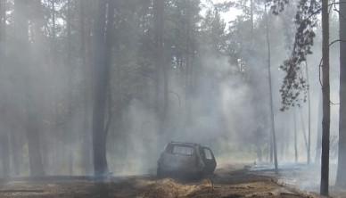 В воронежском лесу сгорели два авто: пострадали мужчина и женщина