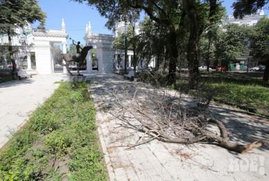 Реконструкцию парка «Орлёнок» могут могут завершить к середине сентября