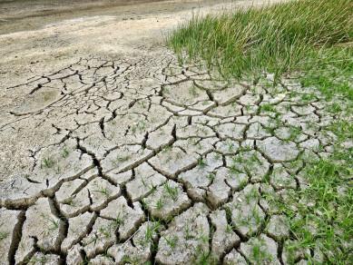 Воронежскую область признали одной изнаиболее подверженных изменению климата областей России