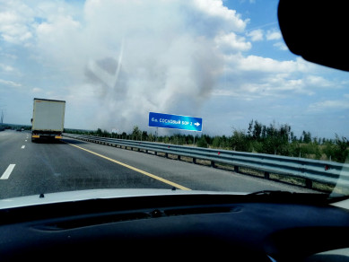 В Воронеже у «Соснового бора» горит лес