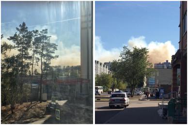 Воронежцы сняли на видео горящий у больницы № 8 лес