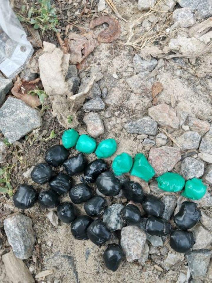 Двое тамбовчан пытались сбыть крупную партию наркотиков в Белгороде