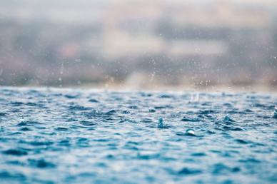 Прогноз погоды в Воронеже на понедельник, 20 сентября