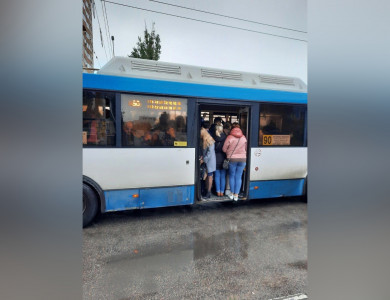 «В Воронеже небудет побеждён ковид, потому чтонельзя так ездить каждый день»