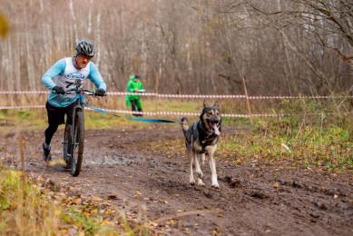 Воронежский спортсмен выиграл необычную гонку наскутерах ссобаками