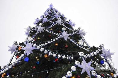 Мэрия Воронежа выделит больше двух миллионов рублей на установку ели на площади Ленина