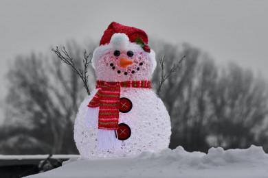 Минус и снег. Как Воронеж встретит начало следующей недели
