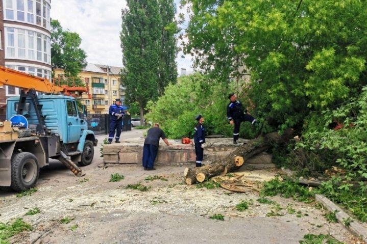В Новолипецке из-за ветра 12 домов остались без электричества