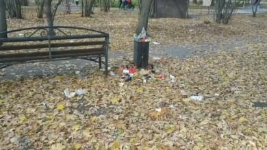 Воронежанка пожаловалась на жуткое состояние парка в Коминтерновском районе