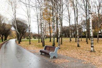 Прогноз погоды в Воронеже на вторник, 26 октября