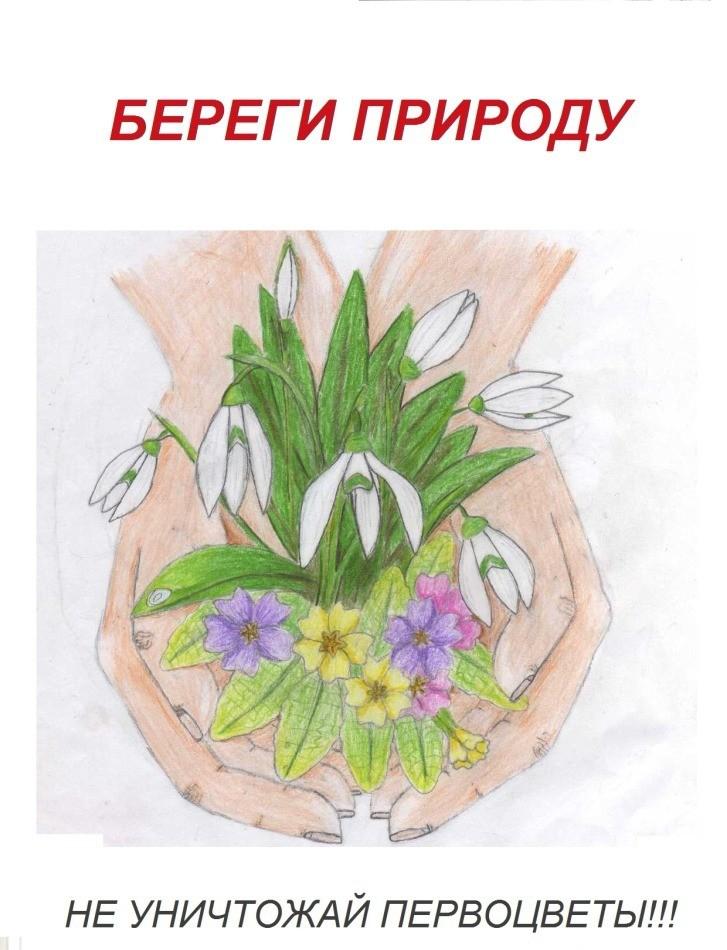 плакат берегите растения картинки называется такое