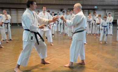Воронежские каратисты выиграли 5 медалей на чемпионате ЦФО