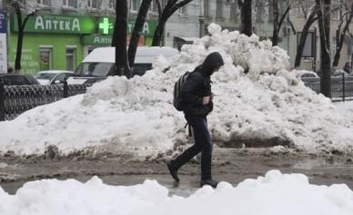 Непогода в Воронеже: повалены десятки деревьев, затоплены улицы