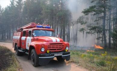 В Воронежской области ввели особый противопожарный режим