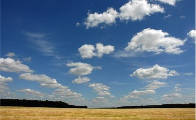 В трёх районах Воронежской области объявили штормовое предупреждение из-за жары