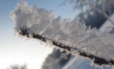 Синоптики: «Снегопады придут в Воронеж к концу недели»