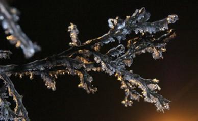 В понедельник в Воронеже ударят морозы до – 20 градусов