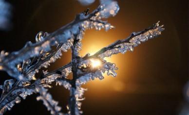 Ночью в Воронежской области ожидается до -23°С