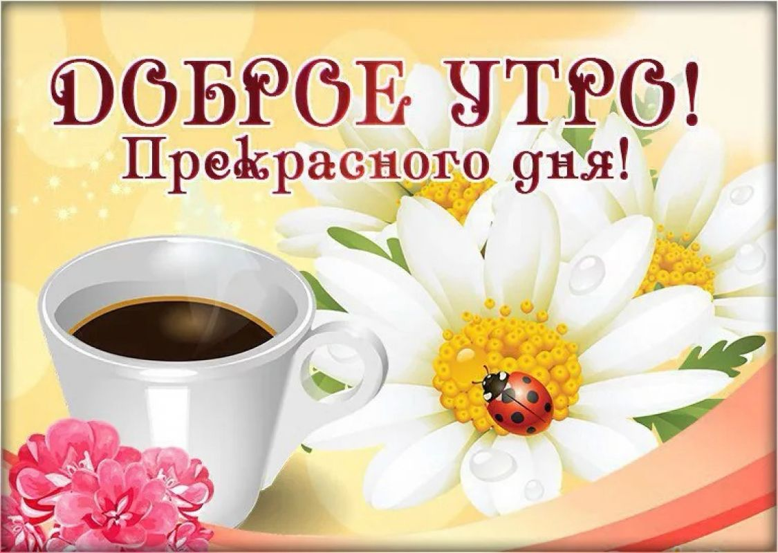 Картинки, всем доброго утра и прекрасного дня открытки