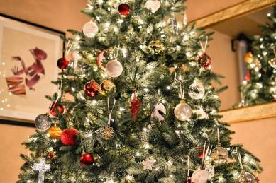 Роспотребнадзор дал воронежцам советы по выбору хорошей новогодней ёлки