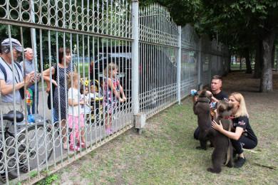 Кто устраивает возле цирка репетиции с крошечными медвежатами?