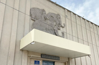 На дистанции с мамонтёнка и в маске. Открылся воронежский музей «Костёнки»